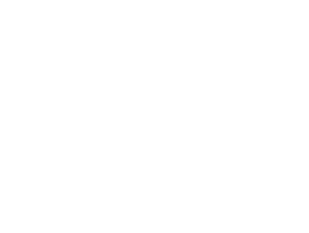 Shoes 4 Sports